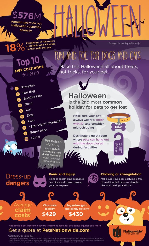 Halloween Facts about Pets