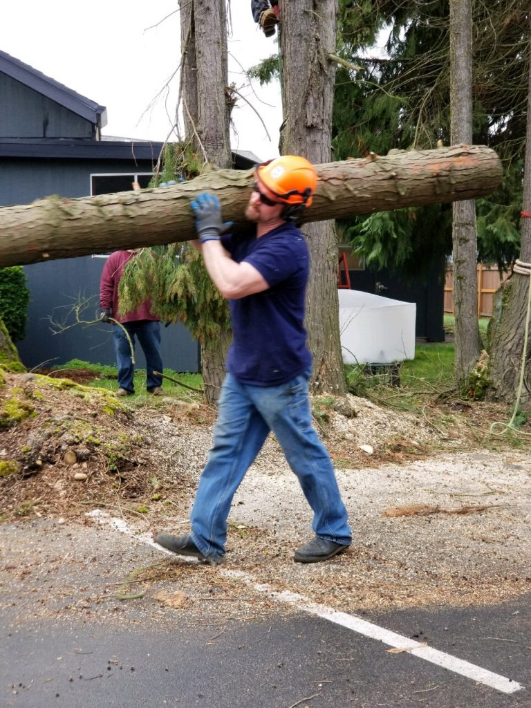 Chris carries log